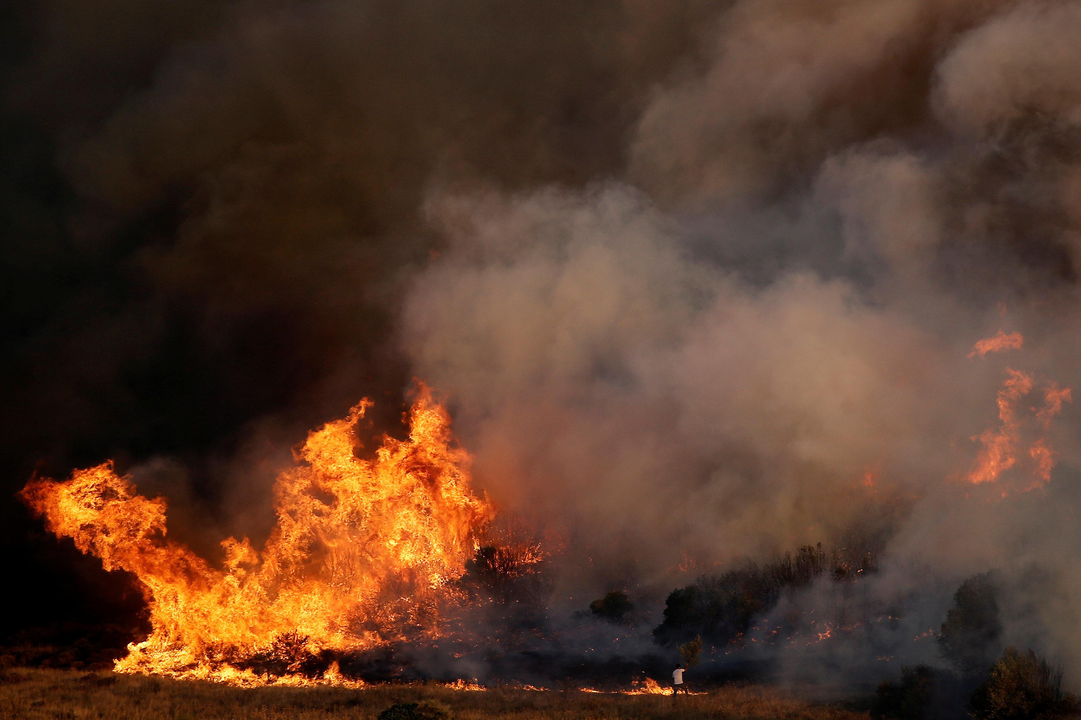 Μεγάλη φωτιά στη Ζόλα Κεφαλλονιάς ενώ στην περιοχή πνέουν ισχυροί