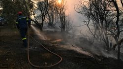 Φωτιά στην Σπιάτζα, στην περιοχή Πύργου