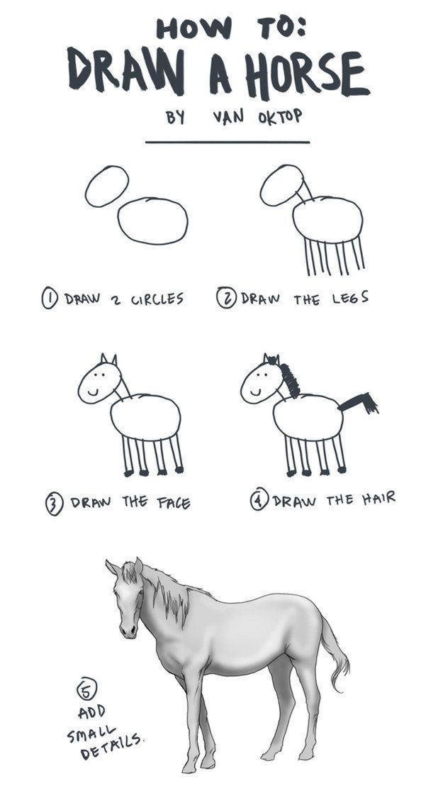 How To Draw A Horse Is The Only Art Guide You Ll Ever Need Picture Huffpost