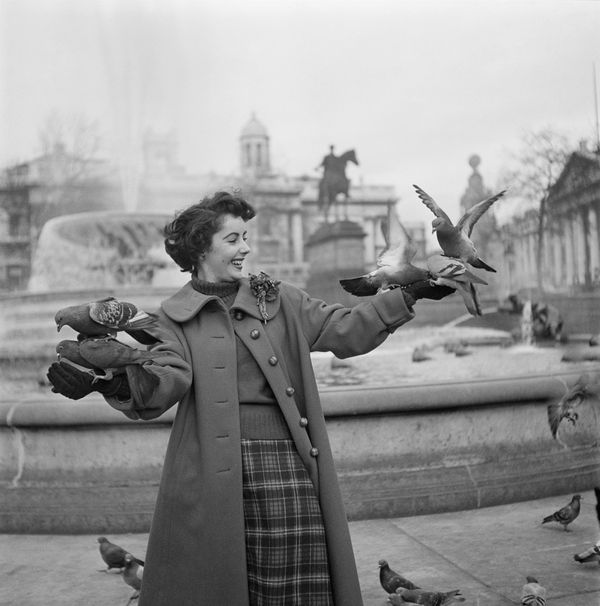 Taylor surrounded by pigeons in Trafalgar Square, London, in 1948.