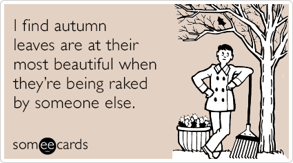 "<strong>To send this card, <a href=""http://www.someecards.com/seasonal-cards/raked-autumn-leaves-funny-ecard"" target=""_blank"""
