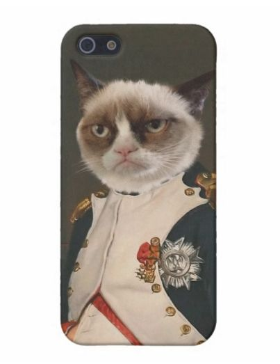 """Get your """"Dashing through the NO"""" on with this awesome Grumpy Cat case. <a href=""""http://www.zazzle.com/grumpy_cat_classic_pai"""