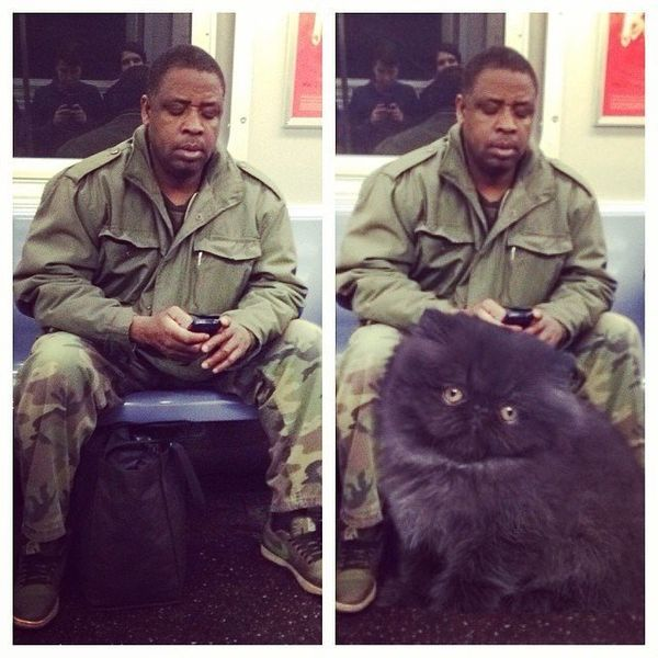 "Some guys <a href=""http://savingroomforcats.tumblr.com/"" target=""_blank"">take up so much space on the subway</a>, it's like t"