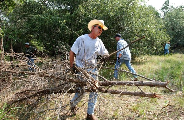 George W. Bush clears cedar at his ranch in Crawford, Texas on August 9, 2002.