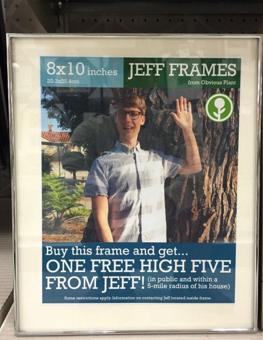 """A free high-five? A free haiku? <a href=""""http://obviousplant.tumblr.com/post/116566629738/please-find-these-so-i-can-give-you"""