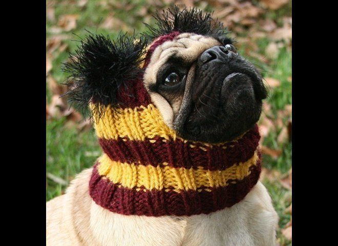 Hogwarts school colors are like lifeblood for the sartorial visionaries of Harry Potter fandom, with Gryffindor's scarlet-and