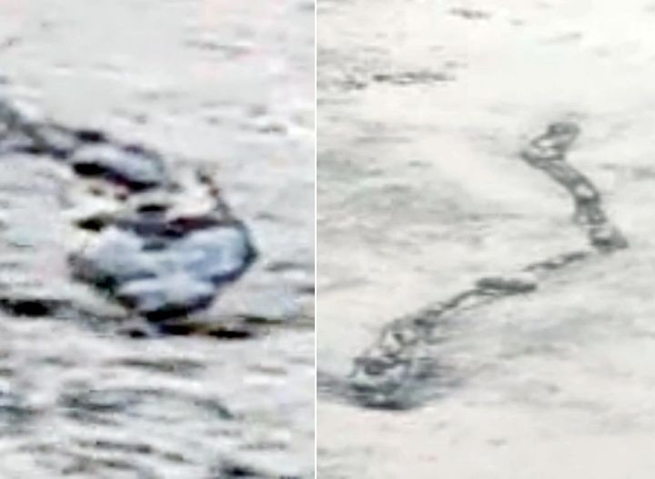 Iceland's Loch Ness Worm Monster: Real Or Robot? (VIDEO) | HuffPost