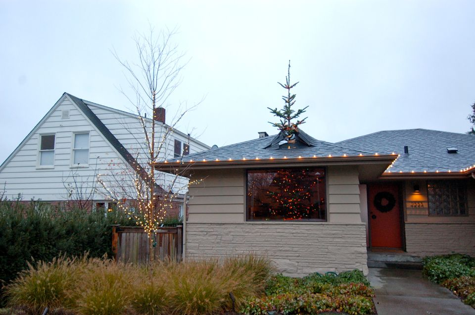 Patrick Kruger of Seattle bought a tree too big for his house, so he came up with a creative way to display it.