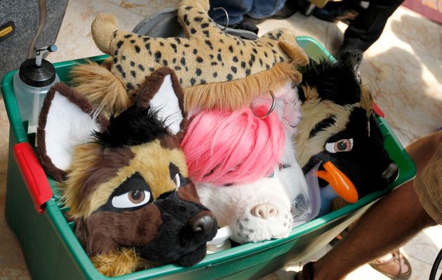 Furries Set The Record Straight: There's Nothing To Be