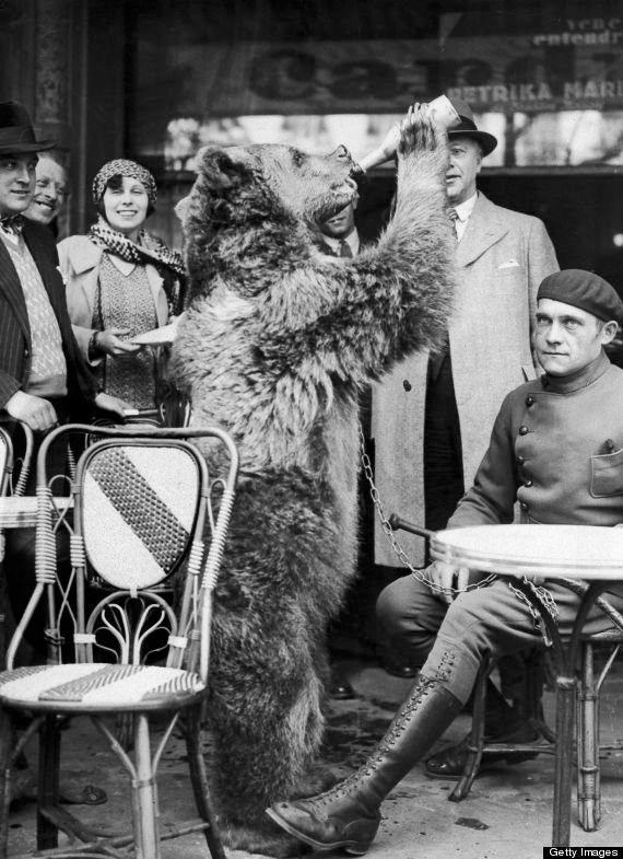 Bear chugging something good in Paris, 1930.