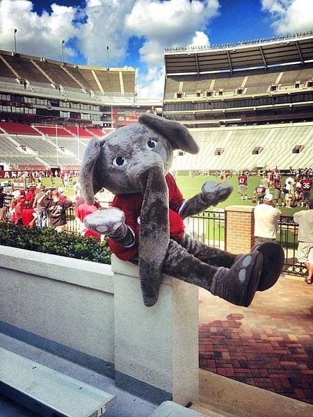This picture of Alabama Crimson Tide mascot Big Al at Bryant Denny Stadium shows kind of how we feel about Alabama's ranking