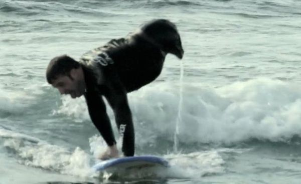 """Kevin Connolly is very into extreme sports, but <a href=""""https://www.huffpost.com/entry/kevin-michael-connelly-armed--ready_n"""