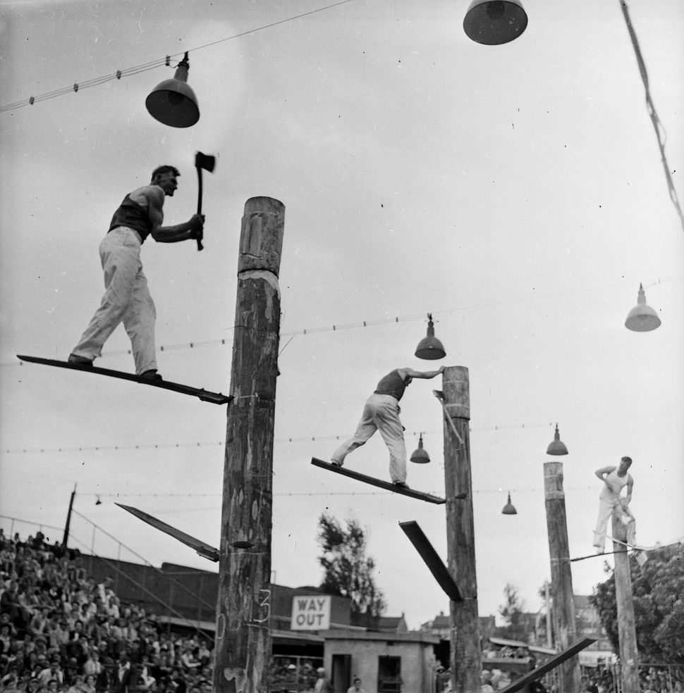 12th November 1956:  Axemen from Australia and Tasmania compete for the world title in the woodchopping championships in Sydn