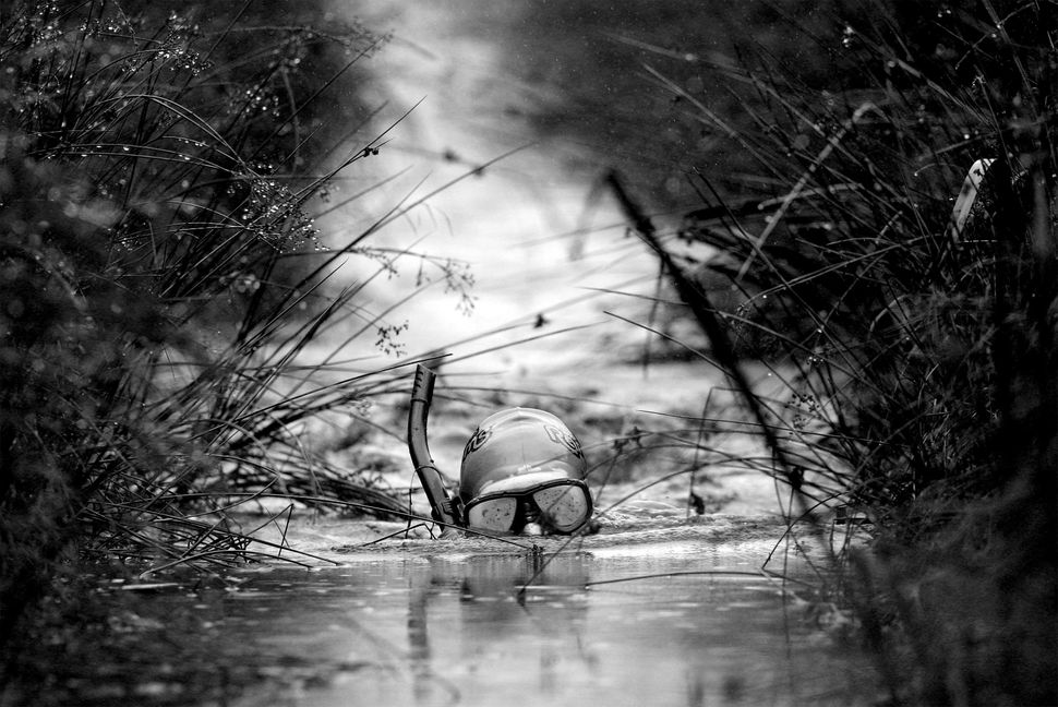 A competitor takes part in the World Bog Snorkelling Championships held at Waen Rhydd Bog on August 31, 2009 in Llanwrtyd Wel