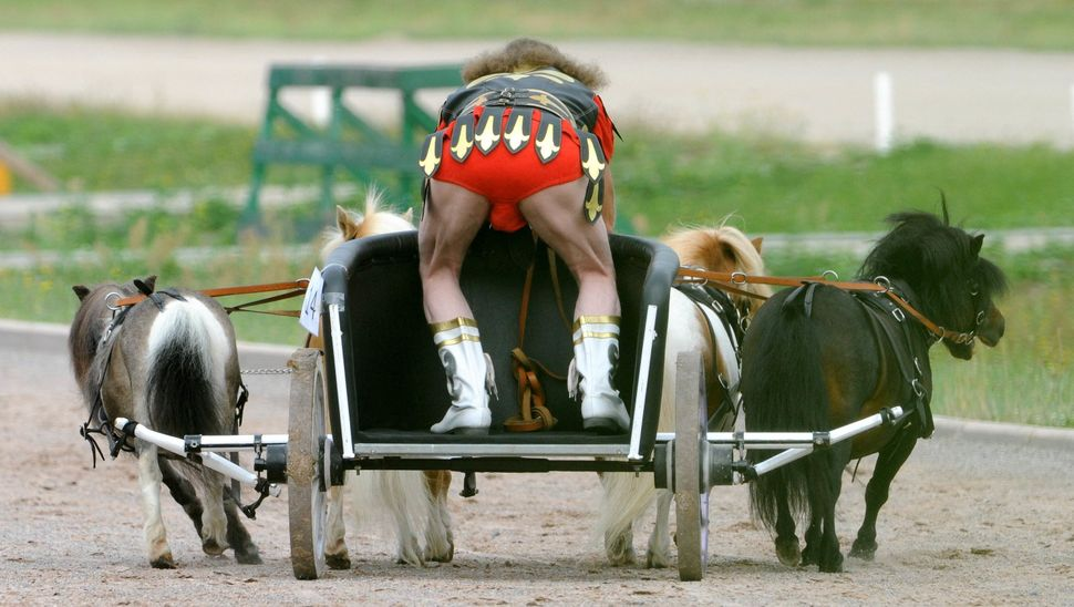 """A rider and his miniature horses compete in the """"wagon race"""" in Berlin, August 8, 2010. Wannabe Gladiators compete with their"""