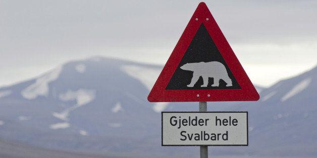 Polar bear warning sign, Longyearbyen, Spitsbergen Island, Svalbard Archipelago, Svalbard and Jan Mayen, Norway