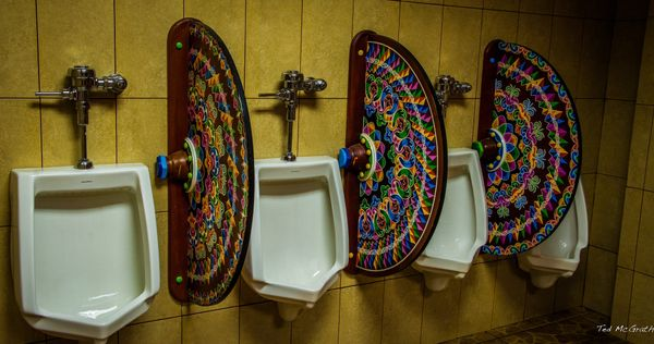 """This bathroom in <a href=""""http://cruisingwithwrinkles.com/featured-destination/"""" target=""""_blank"""">Sarchi, Costa Rica,</a> will"""