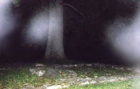 Paranormal Phone Apps Like Ghost Radar Help Smartphone Users Seek