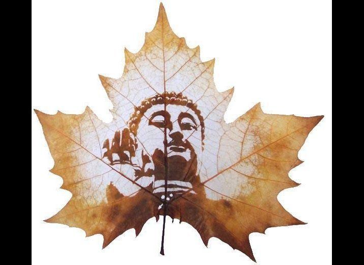 Leaf Carving is a relatively new genre of art where an image is literally carved on to the leaf of the Chinar tree, a tree na