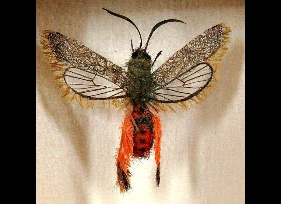 Adrienne Antonson, an artist in Asheville, N.C., has created a unique niche by sculpting amazingly realistic bugs from human