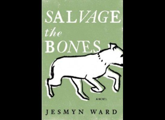 The winner of this year's National Book Award, <i>Salvage the Bones</i> is set in rural coastal Mississippi in the days leadi
