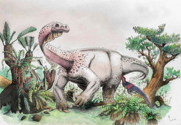 Απολίθωμα νέου είδους γιγαντιαίου δεινοσαύρου ανακαλύφθηκε στη Νότια
