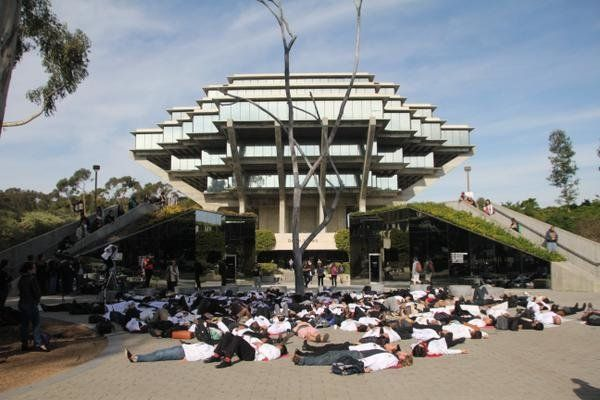 University of California, San Diego students