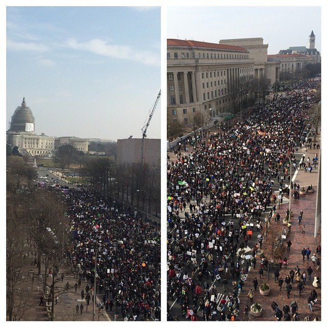 Protestors march down Pennsylvania Ave. in Washington, DC on Saturday, Dec. 13, 2014.