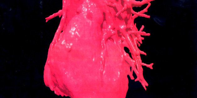 F367684 05: A Three-Dimensional (3-D) Image Displays A Computerised Visualization Of A Human Heart. These Images Were Reconst