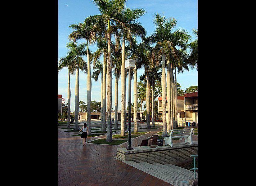 "Sarasota, Fla.  Photo Credit: <a href=""http://en.wikipedia.org/wiki/File:Palmcourt.jpg"" target=""_hplink"">Nathaniel Burbank<"