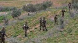 Quatre casemates pour terroristes détruites à Tipaza, Chlef et Tizi