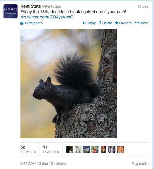 "At Kent State, the black squirrel has been an unofficial <a href=""http://www.ksualumni.org/s/401/index.aspx?sid=401&gid=1&pgi"