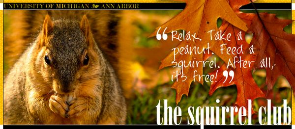 "The University of Michigan in Ann Arbor has ""<a href=""http://www.michigansquirrels.com/"" target=""_blank"">The Squirrel Club</a"