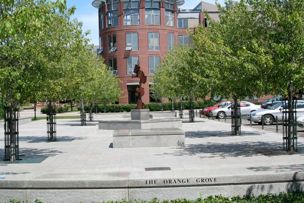 "The Orange Grove is apparently a good place to ""<a href=""http://dailyorange.com/2013/04/soon-to-be-graduate-researches-best-s"
