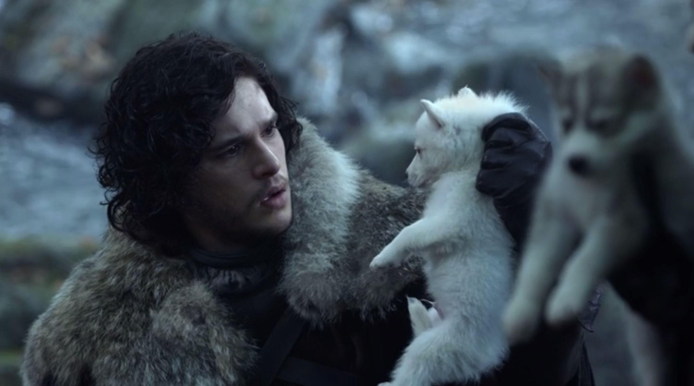 Jon Snow's direwolf Ghost to return in GoT's season 8