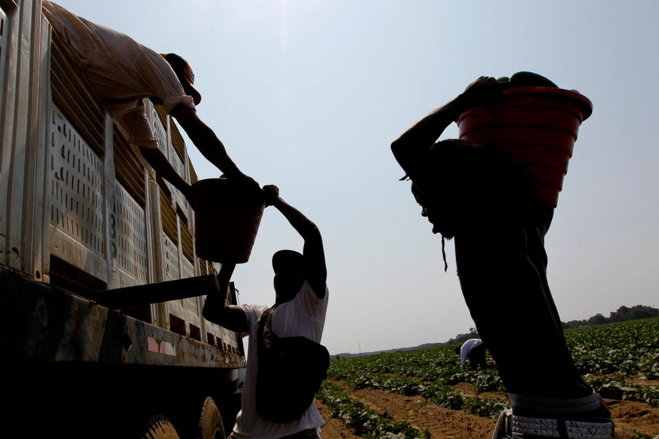 According to data from the Bureau of Labor Statistics, on average more than one farmworker dies per day. That makes farm work