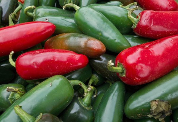 "The name of this spicy pepper comes from the Mexican city of Xalapa in the state of Veracruz. In Nahuatl, <a href=""http://boo"