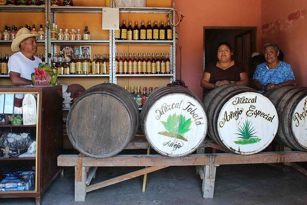 "Technically, all distillate of the agave plant is ""mezcal"" -- even tequila, which specifically refers to liquor made primaril"