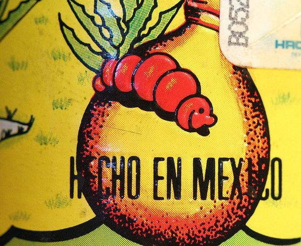 The tradition of putting a worm inside the bottle doesn't come from tequila -- it's actually associated with the mezcales of