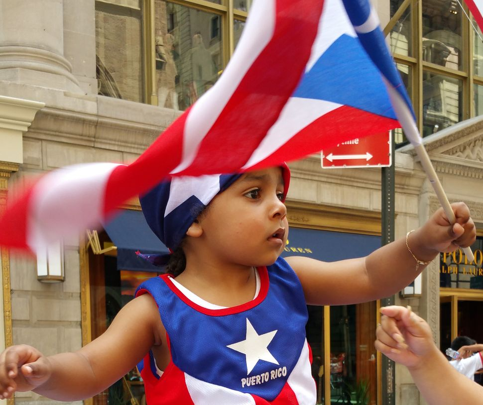 Perched atop his father's shoulders, Enrique Placeres, 2, of Boston, waves a Puerto Rican flag as the annual National Puerto