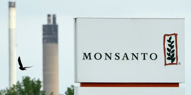 A picture taken on May 24, 2016 in Lillo near Antwerp shows the Monsanto logo at the firm Manufacturing Site and Operations C
