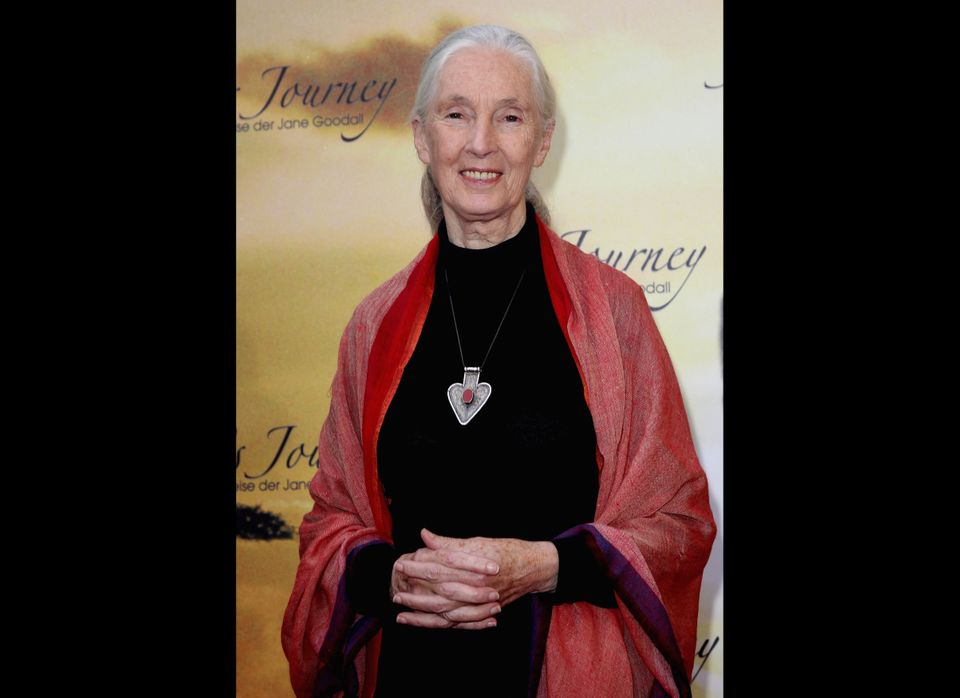 "Primate expert Jane Goodall told the <a href=""http://www.achievement.org/autodoc/page/goo1int-5"" target=""_hplink"">Academy of"