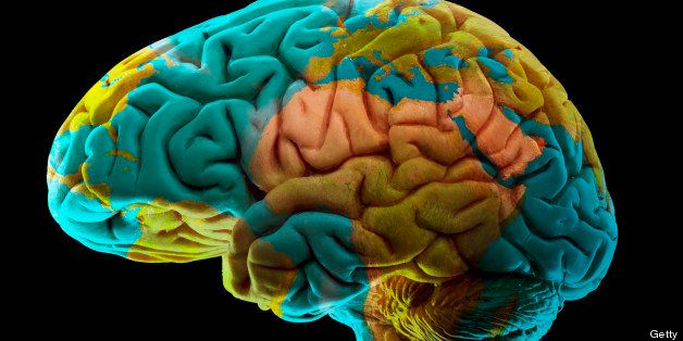 Composition of human brain model and world map