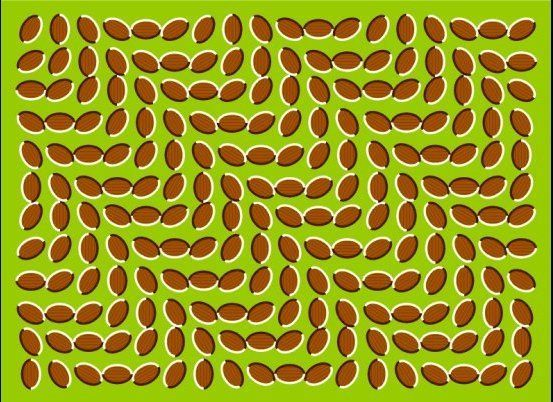 This optical illusion moves in waves as your eye traverses the image.