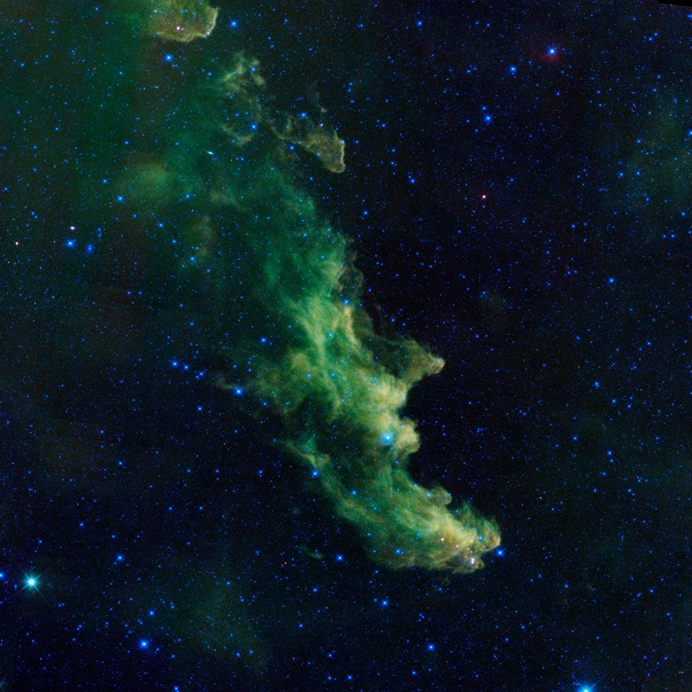 This nebula's name comes from its resemblance to a wicked witch screaming into space. Taken by NASA's Wide-Field Infrared Sur