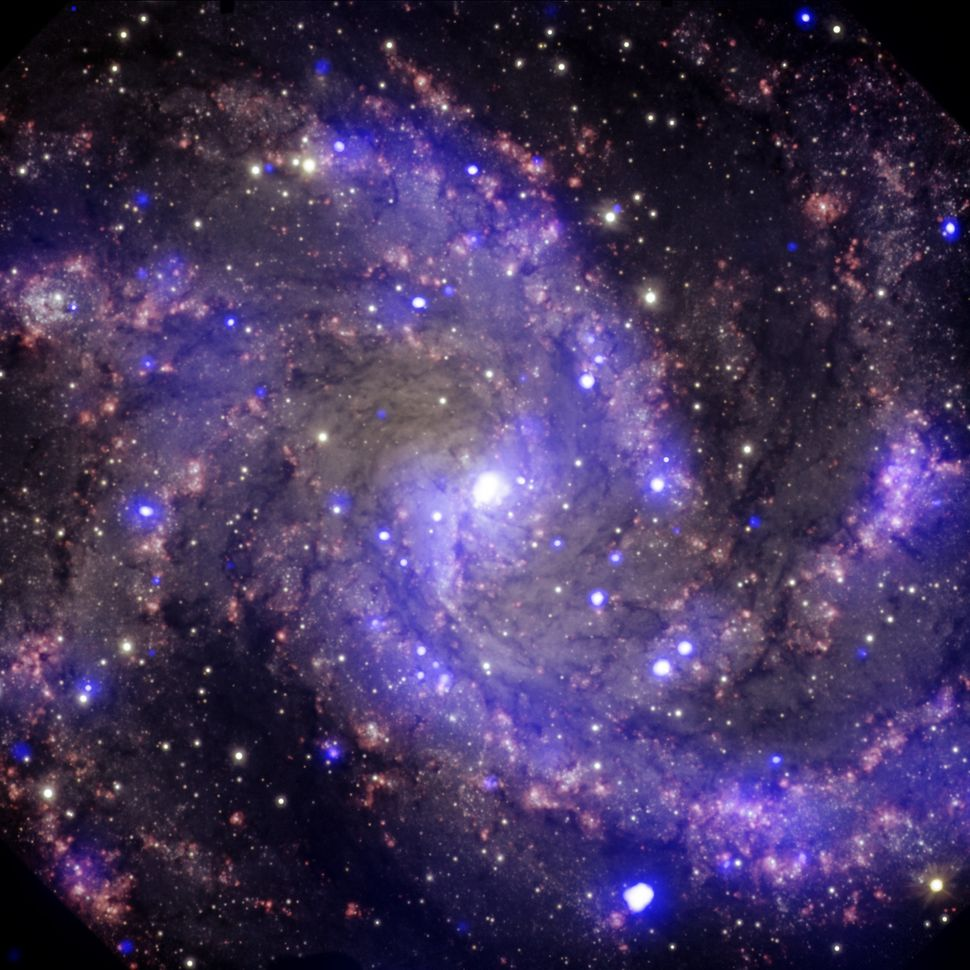 "This is NGC 6946, a medium-sized spiral galaxy located 22 million light years from Earth. It got its nickname, ""The Fireworks"