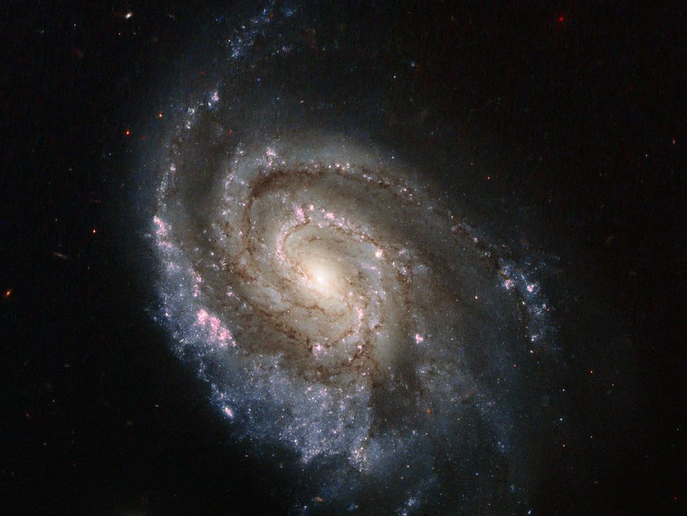 The Hubble Space Telescope captured this image of a star exploding in the spiral galaxy NGC 6984. The new supernova, SN 2013e