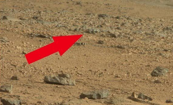 There really wasn't a rat on the Red Planet, of course. But the pattern of light and shadow on one Martian rock sure made it