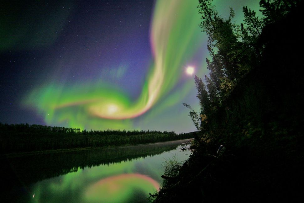 Swirls of green and red appear in an aurora over Whitehorse, Yukon on the night of September 3, 2012. The aurora was due to a