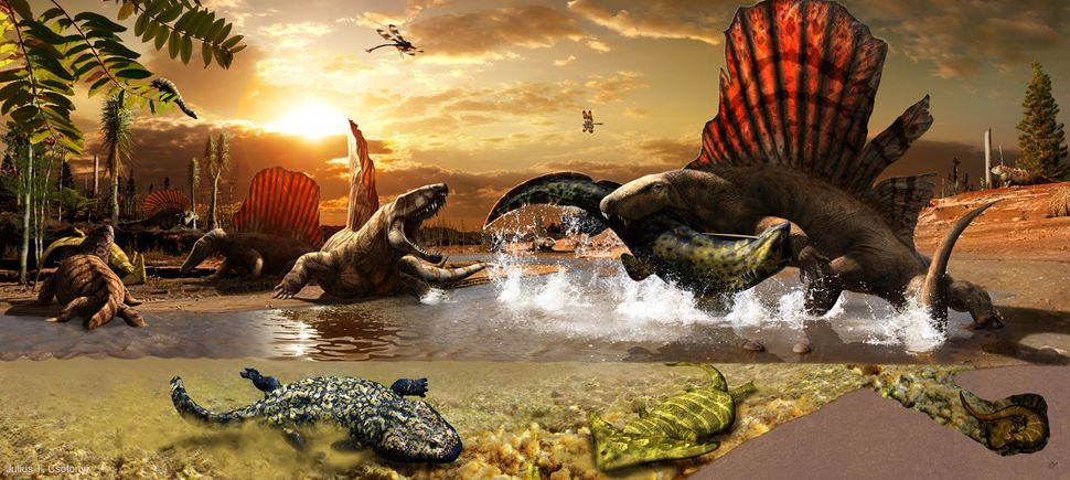 Between dry spells, mammal-like reptiles such as Secondontosaurus and Dimetrodon consumed prehistoric sharks and amphibians.